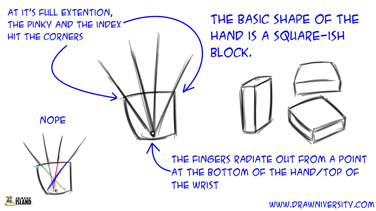 tips for drawing hands 101 animator island