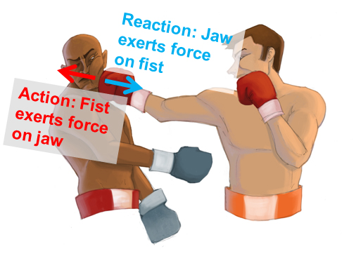action-reaction-boxer-punch